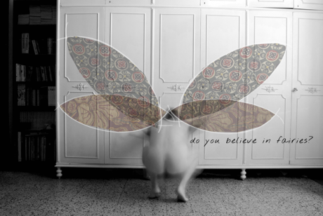 Donatella do you believe in fairies web