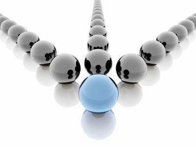 leadership web ape