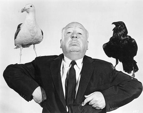 Hitchcock gli uccelli