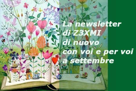 newsletter web