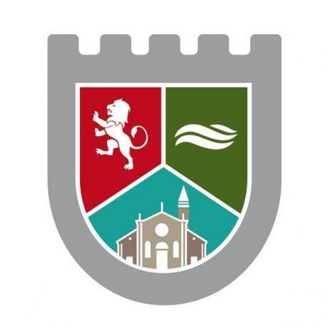 Municipio 3 Logo