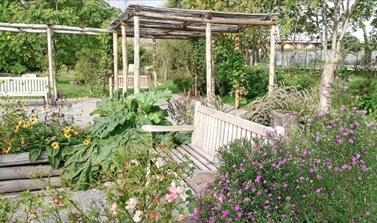 restorative garden 1