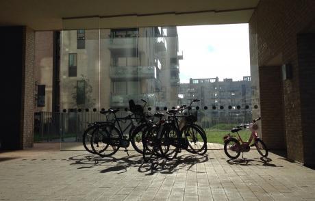 biciclette cortili